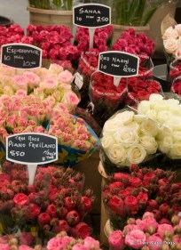 Amsterdam flower markets