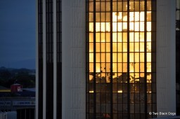 Reflections of a sunset on a building, Palmerston North NZ