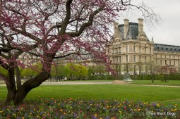 Paris 02-04-2011 12-07 AM