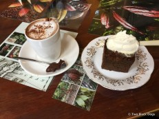 Hot chocolate and warm ginger cake, the Cocoa Tree Pittenweem