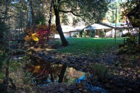 House on green grass next to creek with leaves and fall foliage