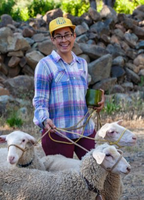 Woman with smile, plaid shirt, yellow hat, can of oats and 3 sheep on a rope