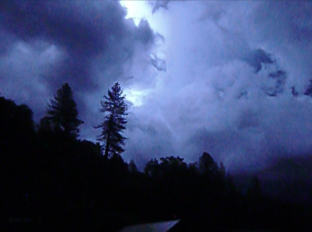 sky with clouds backlit and illuminated by lightning with pine tree in foreground; colors are deep purples, blacks and bright white