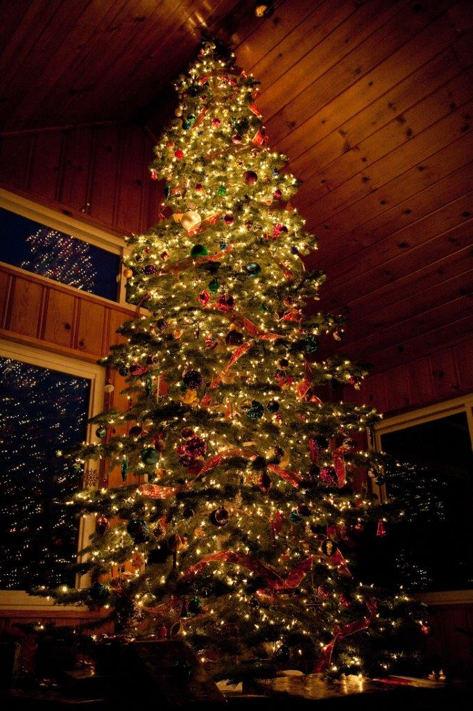 Picture of a lit, decorated Christmas tree in a house a night. Thousands of lights and hundreds of colorful and unusual ornaments. Stunning, with relfections in multiple windows in the background.