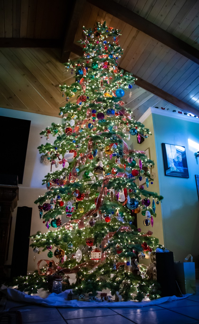 A thirteen-foot Christmas tree in a home, decorated and lit during daylight hours