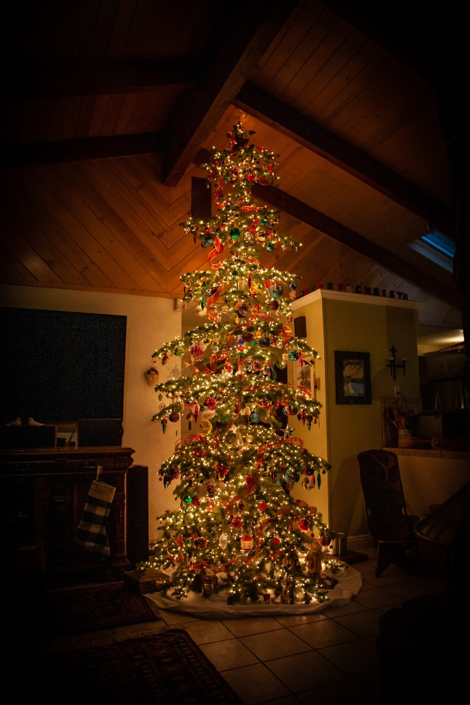 A thirteen foot Christmas tree lit at night