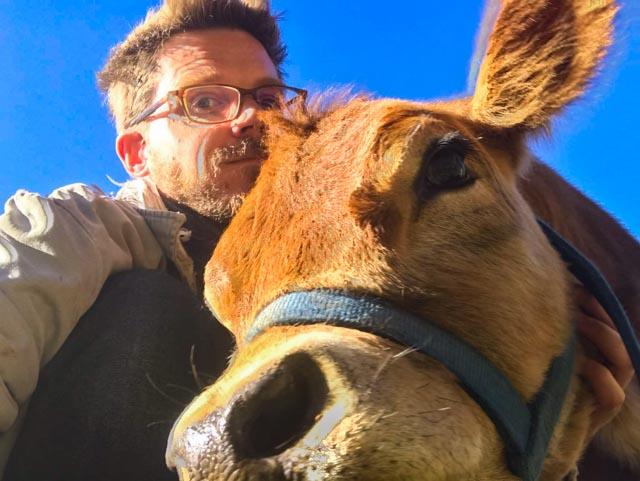 A man hugging a cow
