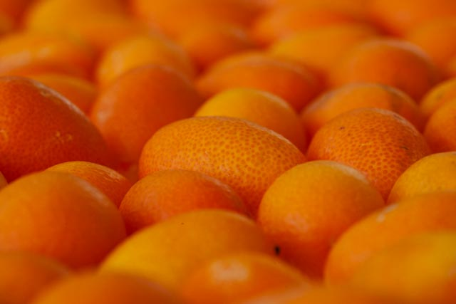 a close up focused on just one kumquat in hundreds of bright orange kumkuats laid closely together -- looks like a round, orange football with the same texture, minus the seams