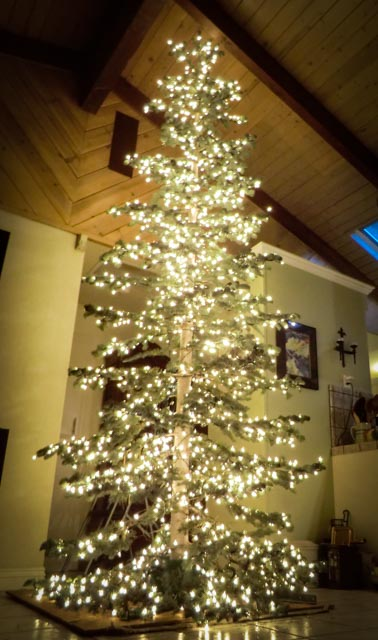 a christmas tree full of lit lights in a home all the way to ceiling