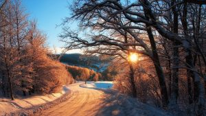 Sunrise Country Road Winter Trees Europe Wallpaper