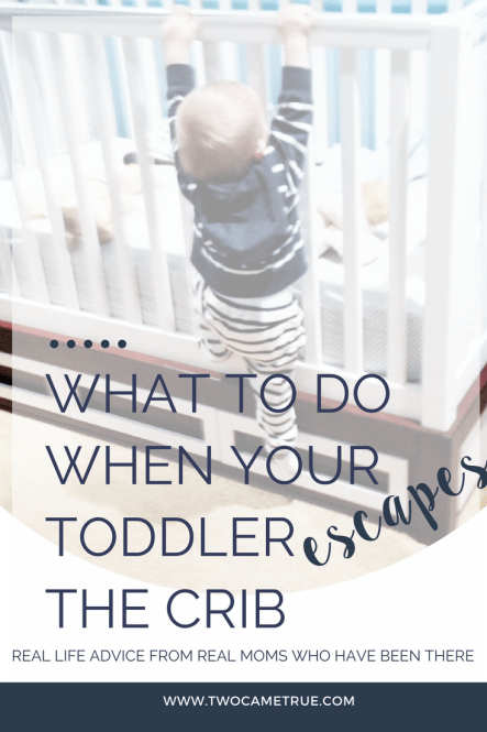 what to do when your toddler escapes the crib