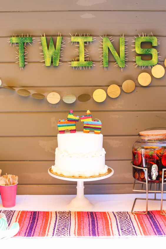 twin baby shower themes