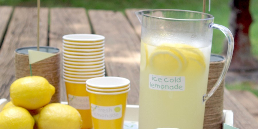 A Lemonade Stand Serves up Writing Lessons Dr Noelle Sterne