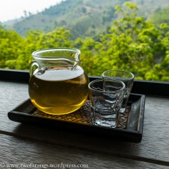 Locally-grown oolong tea.