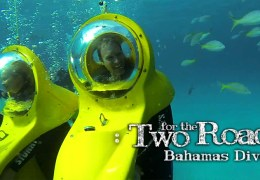 Underwater Adventure in the Bahamas (VIDEO)