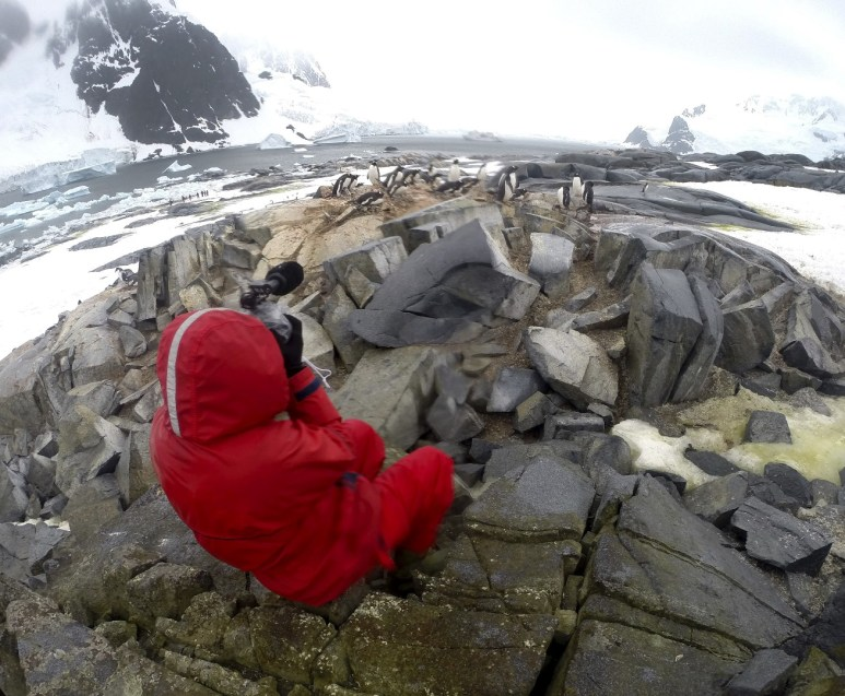 Shooting a penguin colony with the Ioffe in the distance.