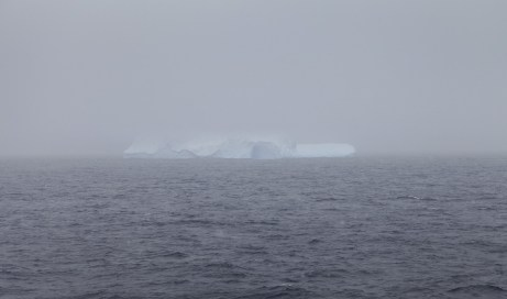 An iceberg appears in the fog. First one we've seen!