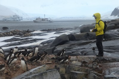 """Among our group were actual """"penguin counters,"""" scientists who joined the expedition in order to get a census of the penguin colonies we visited."""