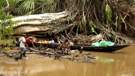 """Our Huaorani guides navigating a """"road block"""" on the river."""