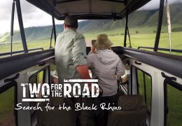Video: Our Search for the Black Rhino in the Ngorongoro Crater