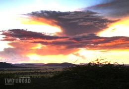 Photo of the Day: A Magical Sunset in the Serengeti