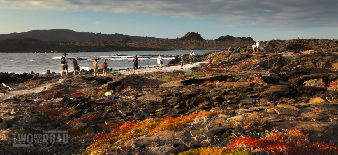 Our Group Walking at Sunset on Sombrero Chino, Galapagos