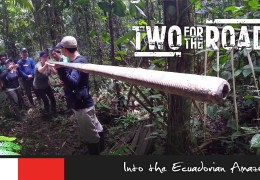Airing Now: More Wild Stuff from Ecuador's Amazon