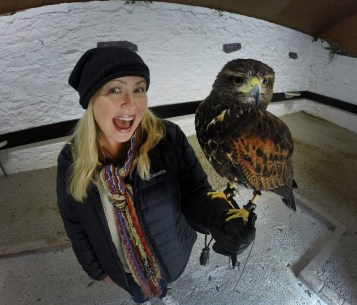 Nik and her bird Inca. All the birds here are Harris's Hawks, and they are absolutely beautiful (and incredibly intelligent)!