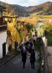 Our group leaving Durnstein and headed back to the bus. What a beautiful spot!