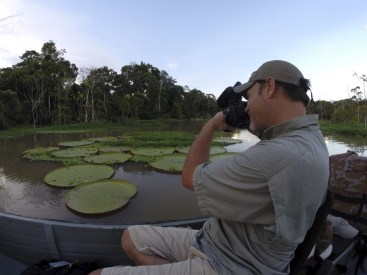 We'd always heard about these giant lily pads...