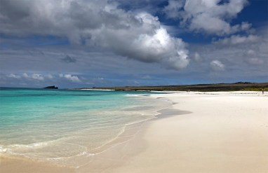 One of the brilliant, blinding white, beautiful beaches on the island of Espanola.