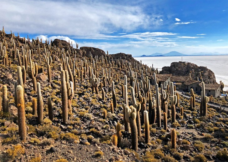 Cactus-covered Inca Huasi Island.