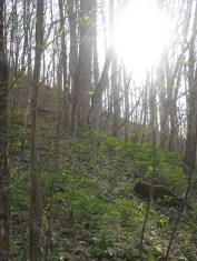 A favorite spot on the trail so far.