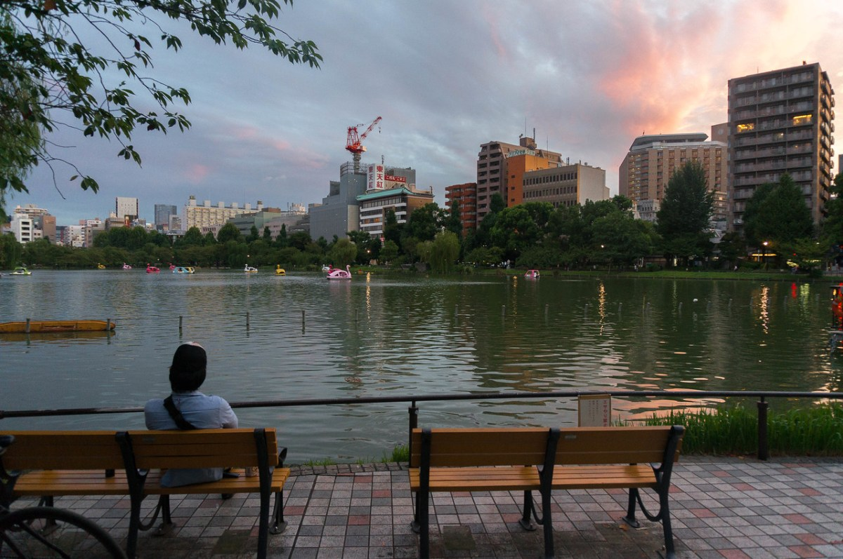 solnedgang ueno park