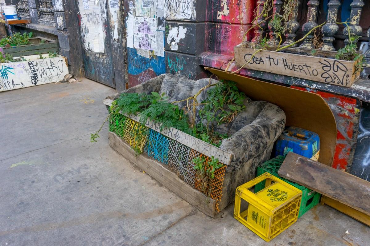 alternativ potteplante