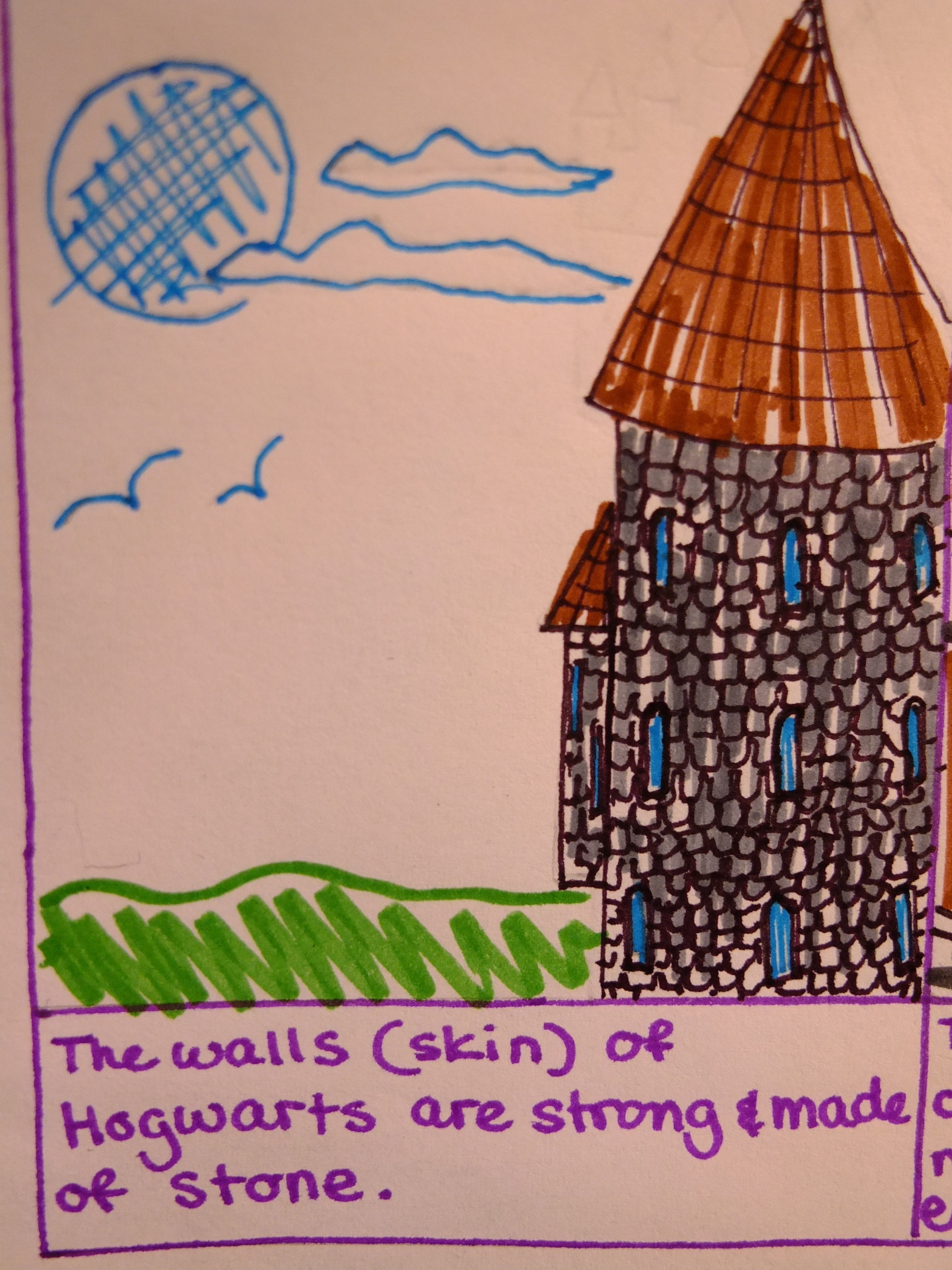 Natalie S Immune System Comic Strip Twointhemiddle