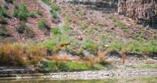 RiverTrip_275
