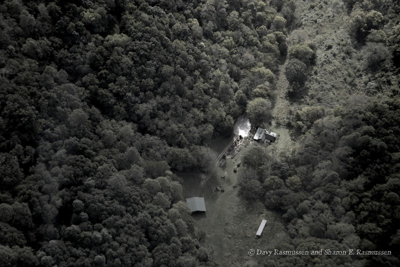 TN Autumn - Flying over Butterfly Hollow