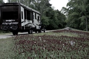 Winding our way along the Natchez Trace from Mississippi to Nashville Tennessee