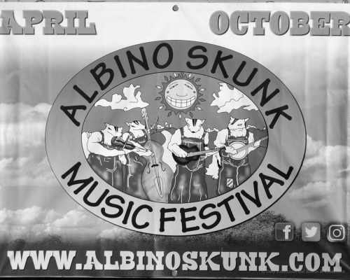 The Magic of the Albino Skunk Music Festival happens every spring and fall