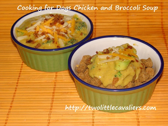 Cooking for Dogs Chicken and Broccoli Soup