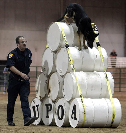 Utah Police Dogs Compete