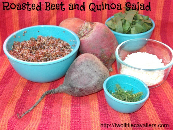 Roasted Beets and Quinoa Salad Cooking for Dogs