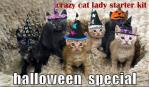 Halloween Fun for Dog and Cat Lovers