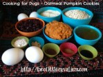 Cooking for Dogs – Oatmeal Pumpkin Cookies