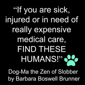 Dog-Ma the Zen of Slobber