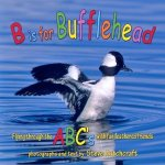 B is for Bufflehead Book Review