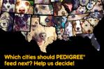 2013 Pedigree Feeding Project