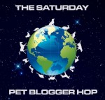 Search and Rescue Dogs / Pet Bloggers Blog Hop
