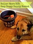 Organization Tips and DIY Dog Stuff Storage Bucket